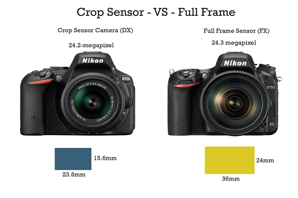 DX vs FX Crop Sensor
