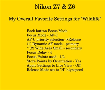 Improve Focus for a Nikon Z6 or Z7 Camera
