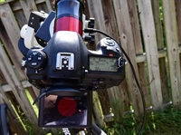 Nikon D500 used with a Daystar Camera Quark for Solar imaging