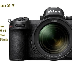 Nikon Z7 Real World Review Z Series