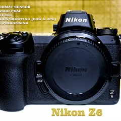 Nikon Z6 Mirrorless Camera Review - Real World