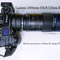 Laowa 100mm f/2.8 Ultra Macro Review