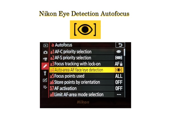Nikon Z Eye Detection and AF Improvements Firmware Update